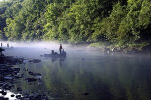 earn more about how you can help the U.S. Fish and Wildlife Service  with fish and aquatic preservation: http://www.fws.gov/fisheries/ (Photo: Larry Jernigan/USFWS)