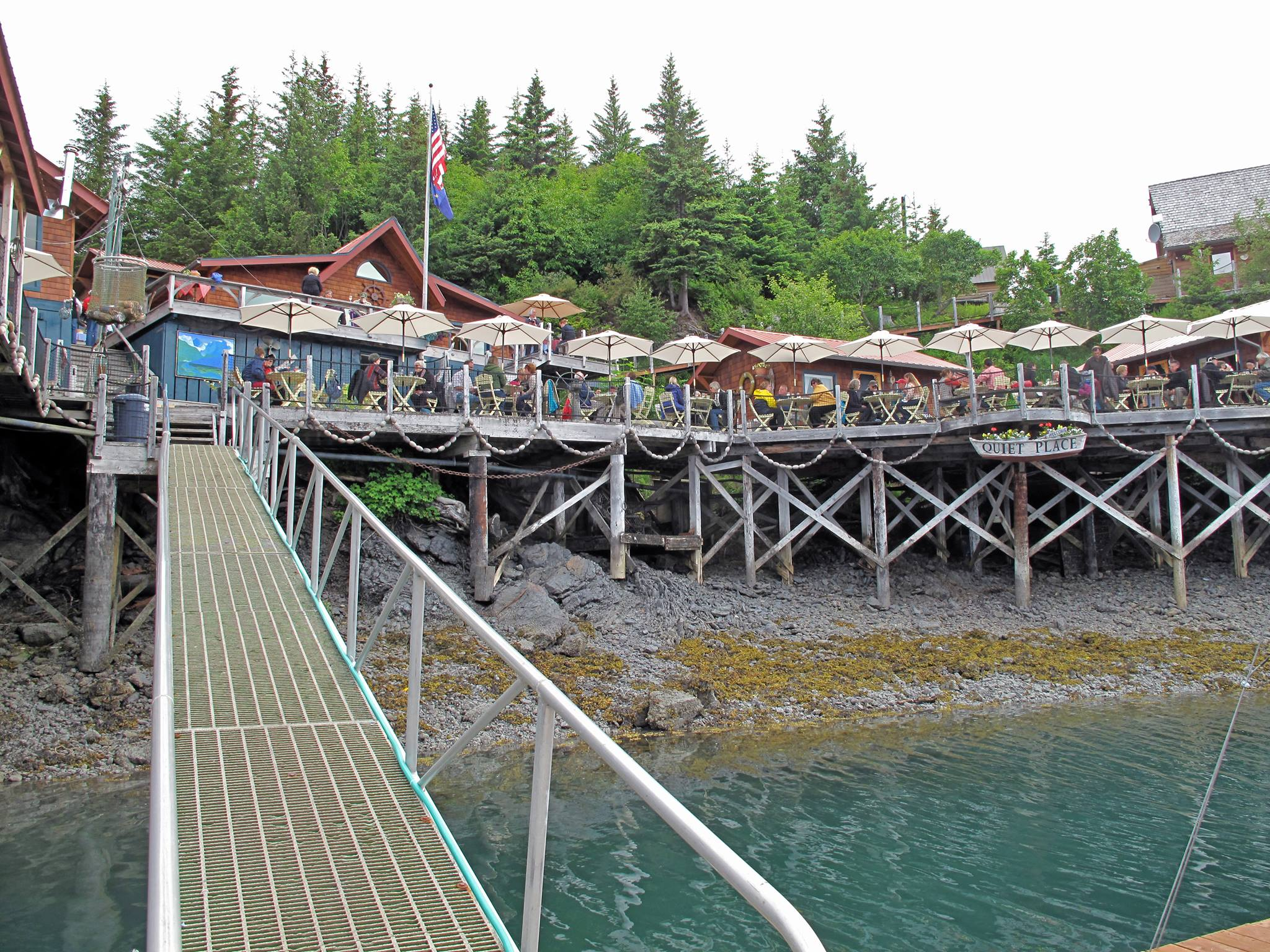 THE BEST Things to Do in Halibut Cove  2019 with Photos