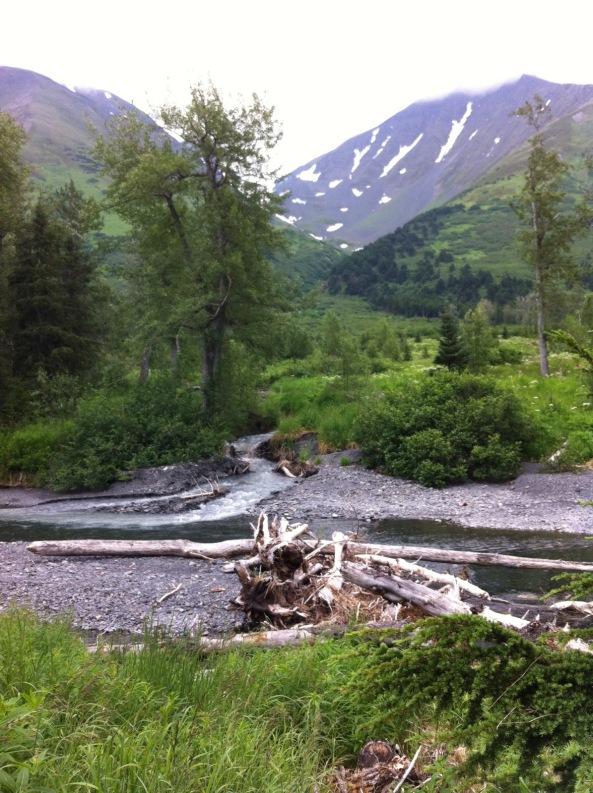 Photo Courtesy of Life in Alaska