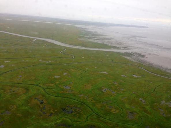 green across bay