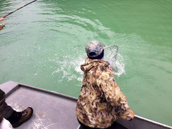 net in the water