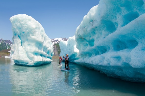 Photo from Liquid Adventures at Bear Glacier in Seward, AK.