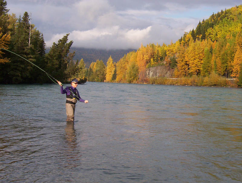 Kenai peninsula fall up close and personal alaska the for Kenai river fishing