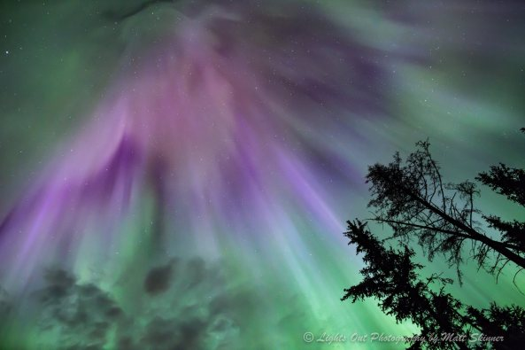 Aurora Borealis photo from Lights Out Photography.