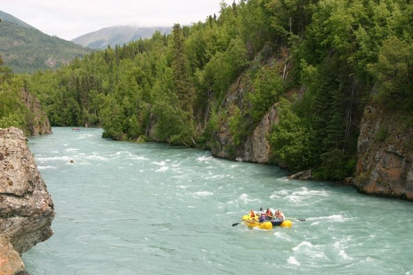 Photo from Alaska Wildland Adventures on the Kenai River.
