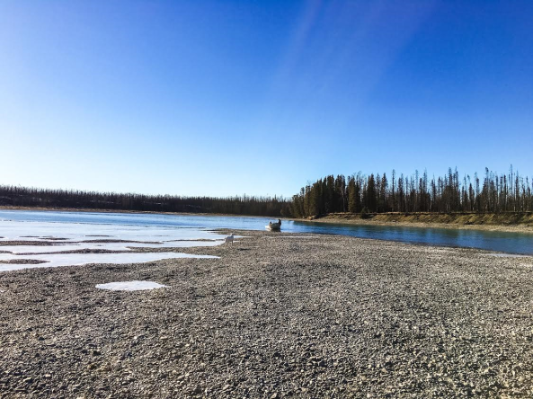 Secluded Kenai River, March 2016.